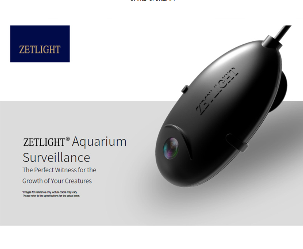 Zetlight Mini WiFi Camera im Detail