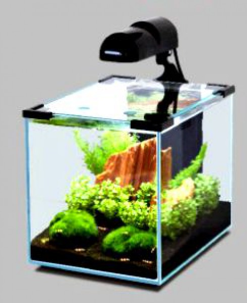 gartenteich teichbedarf aquaristik terraristik sowie. Black Bedroom Furniture Sets. Home Design Ideas